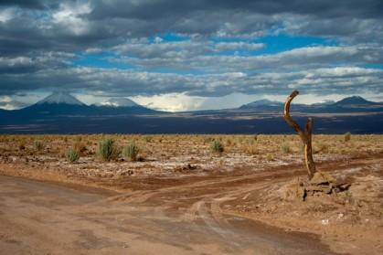 Fork in the desert road