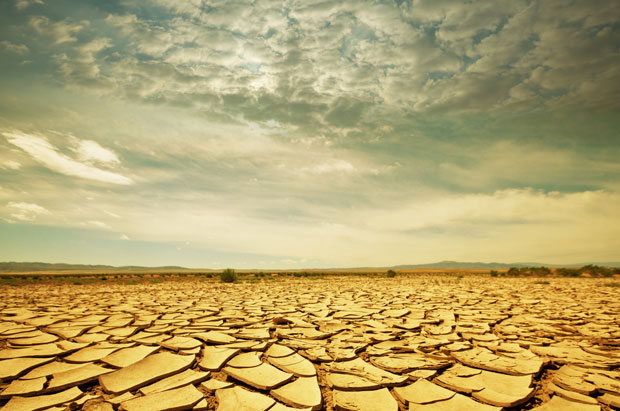 Dry Parched Ground